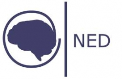Fundación NED