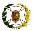 www.colegioenfermeriamalaga.com