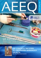 Revista nº 33 - Julio 2013